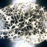 『あなたの脳のはなし』最新脳科学をわかりやすく!新たな知的好奇心を刺激してくれる本